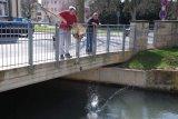 Fischbesatz 2. April 2009