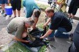 Königsfischen 11.07.2010