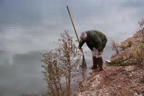 Fischbesatz 2010