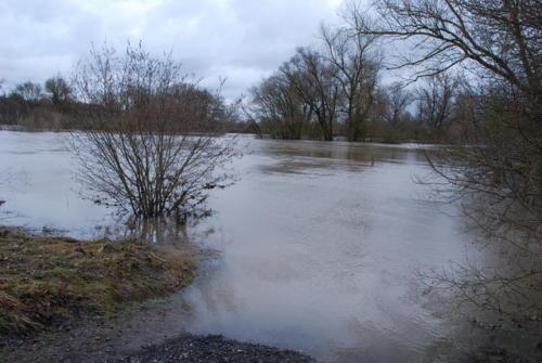 Hochwasser 8.1.-15.1.2011